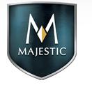 instaflame-majestic fireplace repair